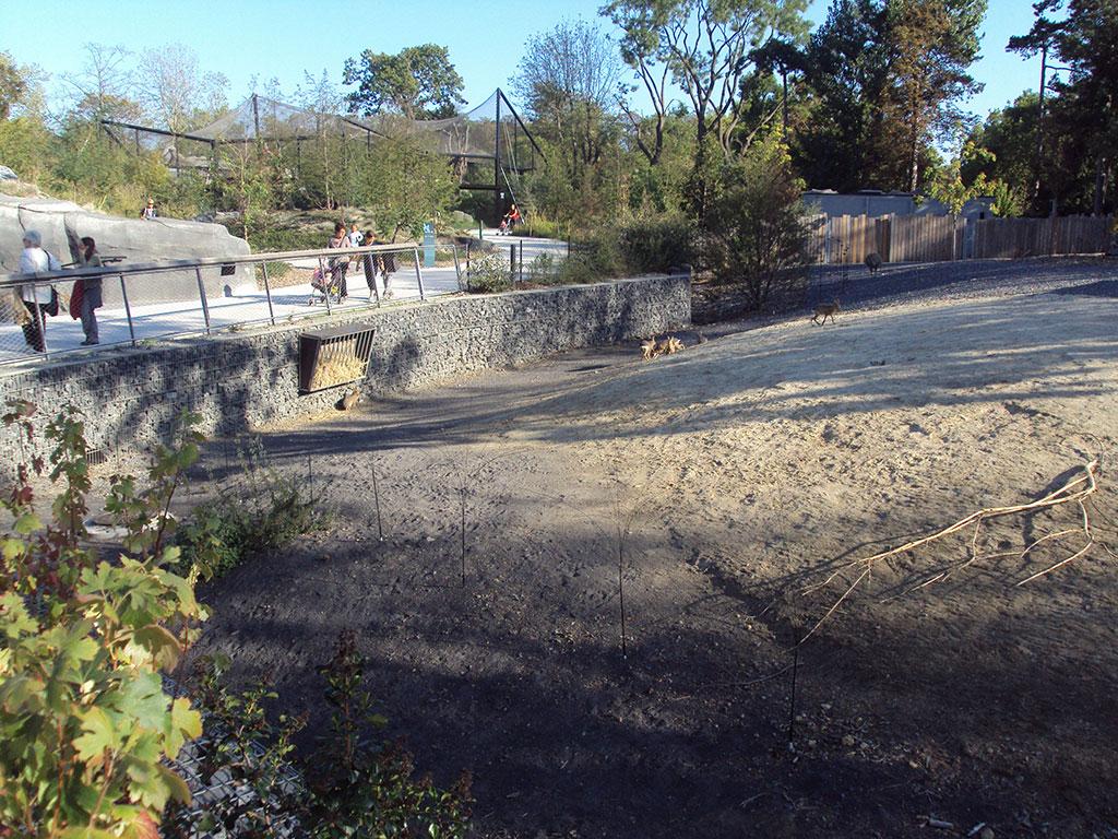 enclos zoo vincennes animal SETP gabion